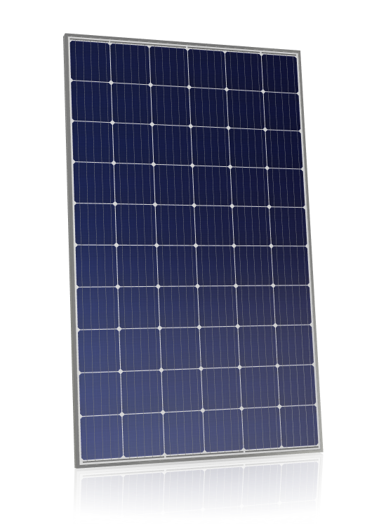 Canadian Solar CS6K-MS 300w